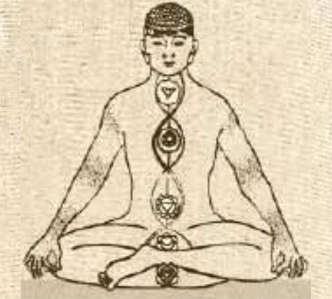 The shared philosophy of yoga and aurveda giving you complete knowledge of what actually Vedic science is!